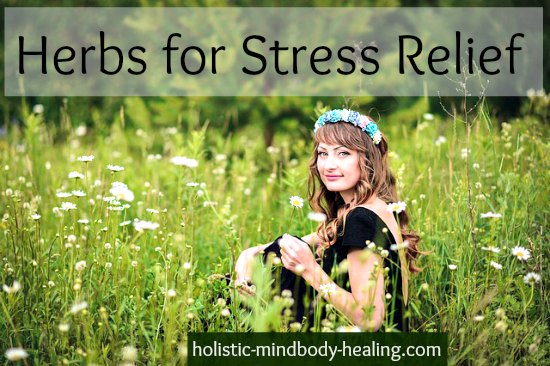 herbs for stress relief and how to use them