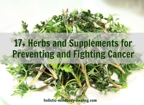 cancer fighting herbs and supplements