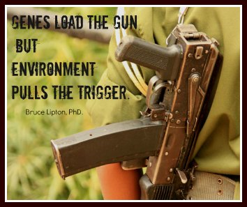 nature versus nurture, genes load the gun, Bruce Lipton quote