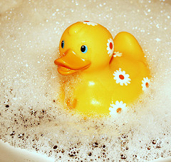 Quack by Swiv. Flickr license below.