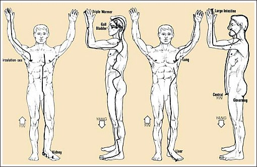 meridian therapy chart